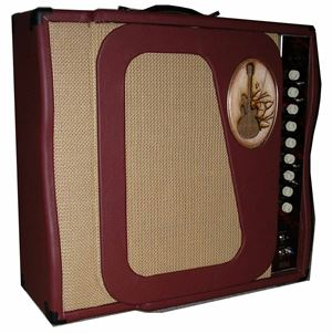 acoustic guitar combo amp